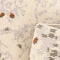 Shop Neutral Color Rugs