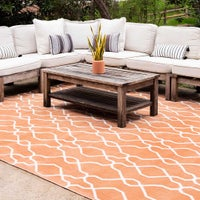 Outdoor Oasis Rugs  image