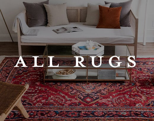 Shop All Rugs Image