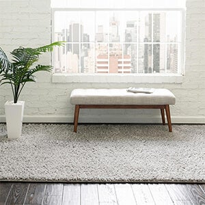 Roll Over New Arrivals Rug image